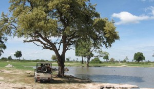 Ufer im Hwange-Nationalpark